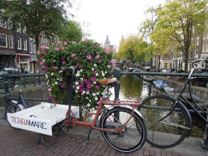 amsterdam-991574_640