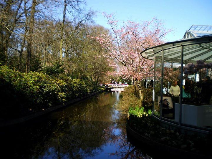 Keukenhof Canals